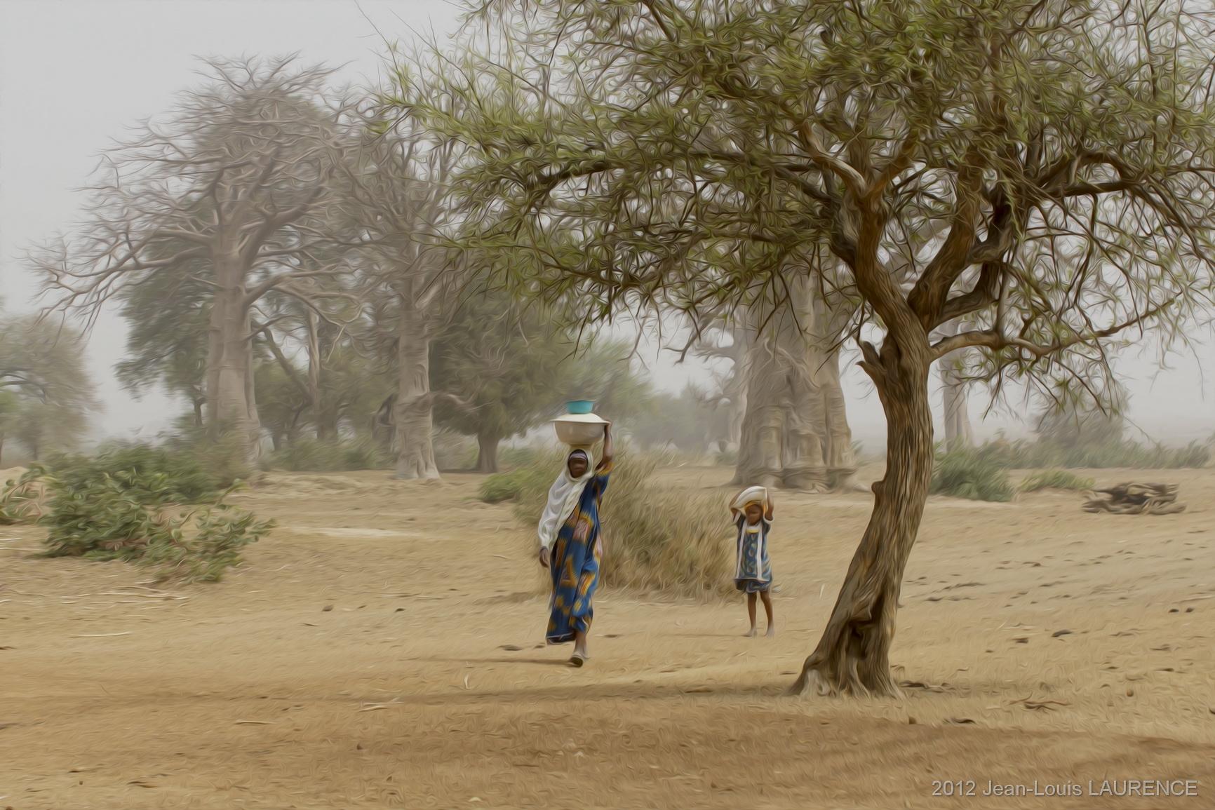 La femme, l'enfant et les baobabs, nord Bénin